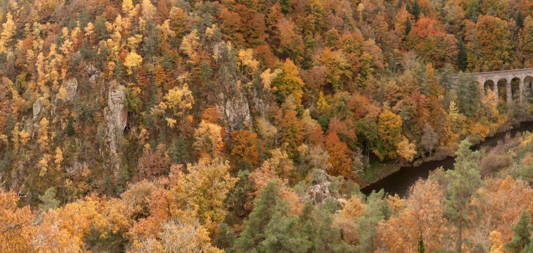 Vallée et gorges du Haut-Allier
