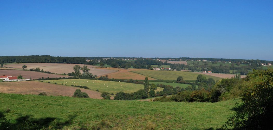 Les végétations de la Forêt et bocage du Val d'Allier vichyssois